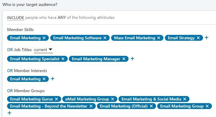 target audience example on LinkedIn