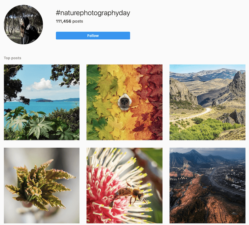 june-marketing-ideas-nature-photography-day-photos