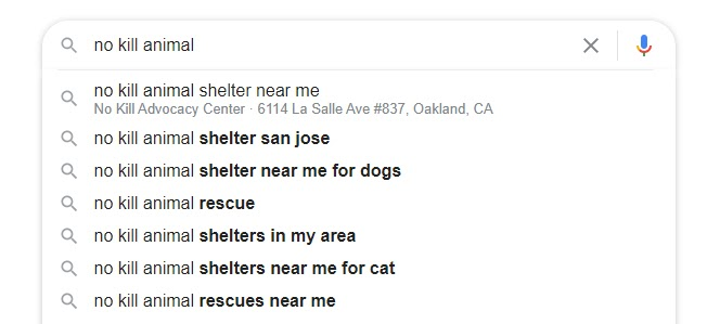 """An image of a Google search for """"No kill animal shelter"""""""