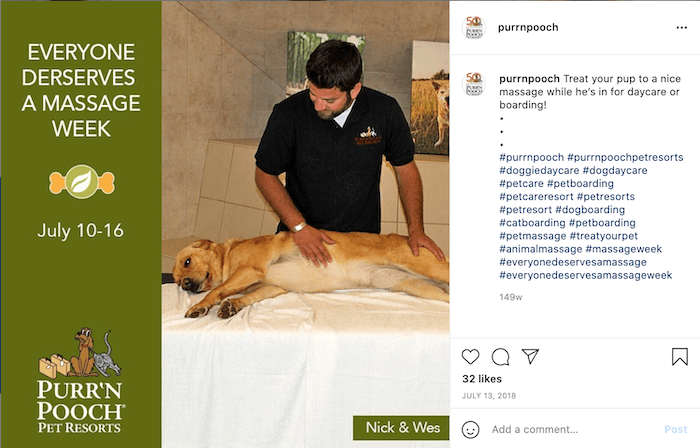 july marketing ideas everyone deserves a massage week dog getting massage